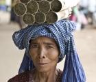 Kambodianska landsbygden